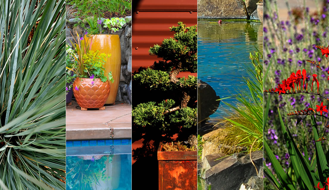 Laurie Sager Landscape Architect Ashland Oregon